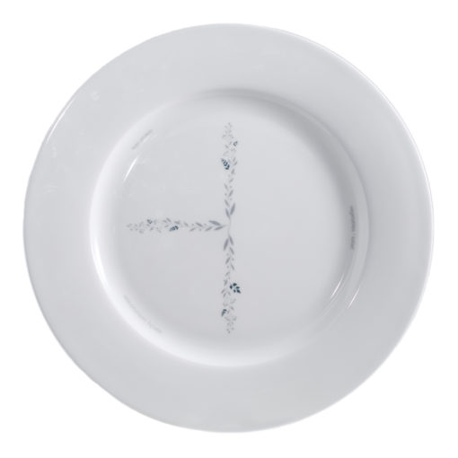 iportion-plate top view