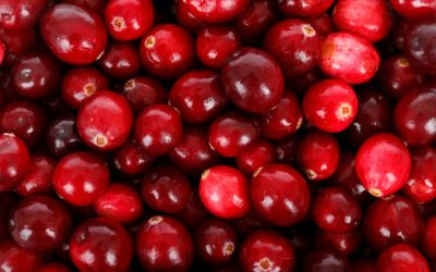 Cranberries and cystitis – can they really help?
