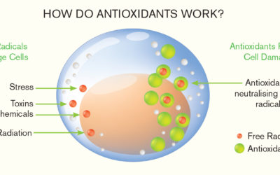 What are Antioxidants & Phytochemicals
